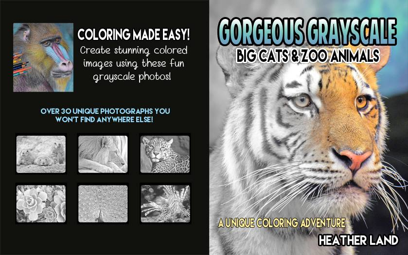 Gorgeous Grayscale: Big Cats & Zoo Animals: Adult Coloring Book by Heather Land (Author)