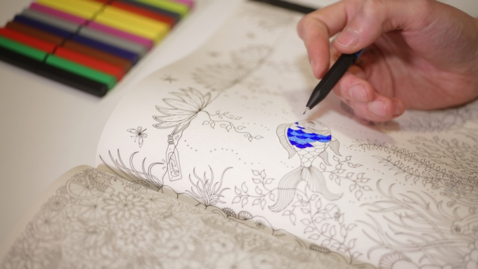 Color with Magnetips refillable fine liner markers for adult coloring books