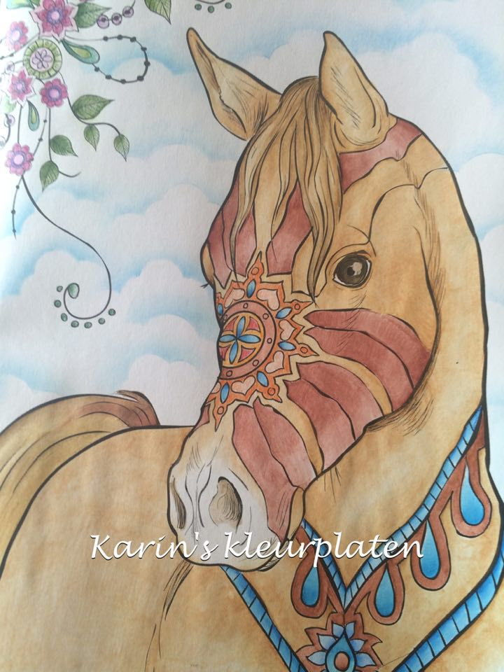 Colorist Karin Kamp colors The Amazing World of Horses by Cindy Elsharouni
