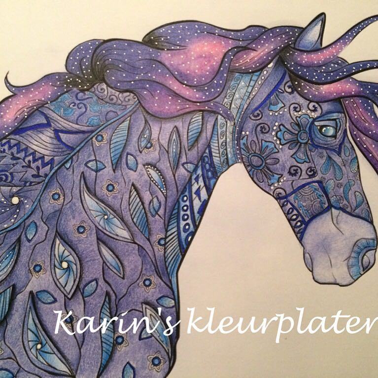 Colorist Karin Kamp Colors And Adult Coloring Book Review Of The Amazing World Horses By