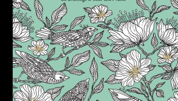 Daydreams Coloring Book Originally Published In Sweden As Dagdrommar