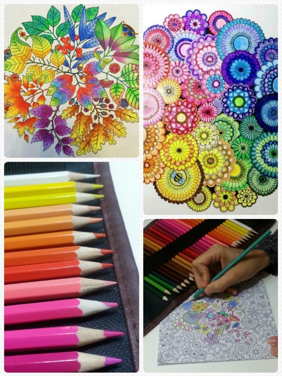 "48 Professional Art Colored Pencils, Non-toxic Drawing Oil Pencils, Supplies with Roll UP Washable Canvas Pencil Bag: Enhance your creativity with this adult coloring book ""secret garden"" FREE GIFT!"